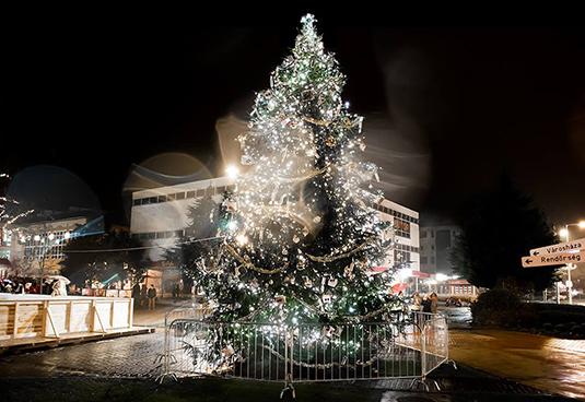 Orosháza karácsonyfája, 10 méter magas és 1,5 tonnás (Fotó: Forgó Imre)
